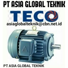 ELECTRIC MOTOR TECO
