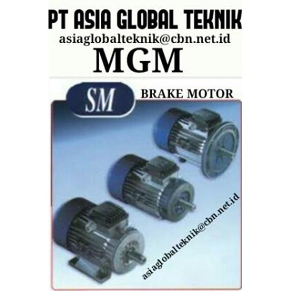 Gear Motor Elektrik MGM