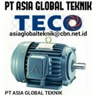 TECO ELECTRIC MOTOR 2