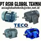 TECO ELECTRIC MOTOR 1