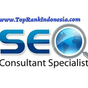 Search Engine Optimization By Top Rank