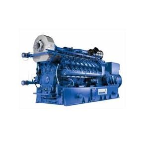 Mwm Gas Engine