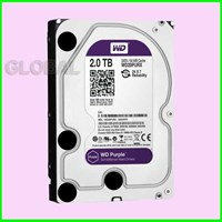 Jual WD 2.0Tb Purple