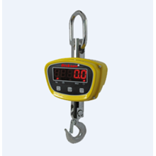 Digital Crane Scale Dickson XZ-GGE
