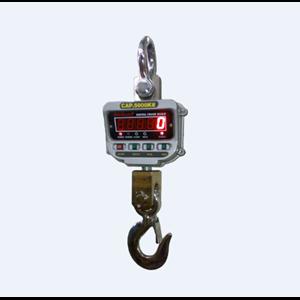 Digital Crane Scale Dickson CSD Series