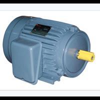 Electro Motor 3 HP