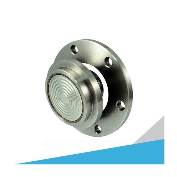GDS 830 Pulp & Paper Design Diaphragm Seal