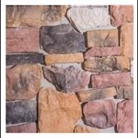 batu alam cetakan type fossil