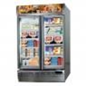 Up Right Freezer GEA EXPO-1000AL/CN