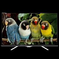 TV LED AKARI 32
