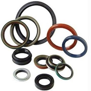 Oil Seal & O Ring
