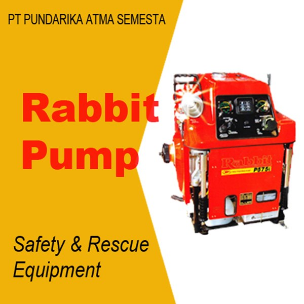 Pompa Rabbit