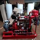 Pompa Hydrant  Diesel 500 gpm 750 gpm 1000 gpm 3
