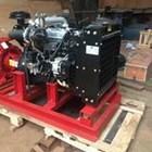 Diesel pump 2