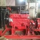 Hydrant pump 8