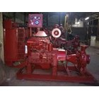 Pompa Hydrant Diesel 6