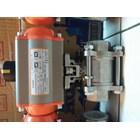 Pneumatic actuator CASA 7