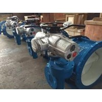Electric actuator multi turn RAGA 1