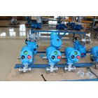 Electric Actuator Neumax 4