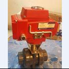 Electric Actuator Casa Type : CAS 9