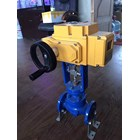 Electric Actuator Casa Type : CAM 4