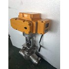 Electric Actuator Casa Type : CAM 3