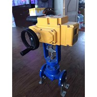 Beli Electric Actuator Casa Type : CAM 4