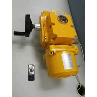Jual Electric Actuator Casa Type : CAM 2
