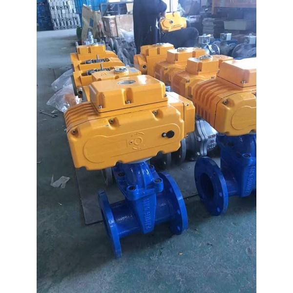 Electric Actuator Casa Type : CAM