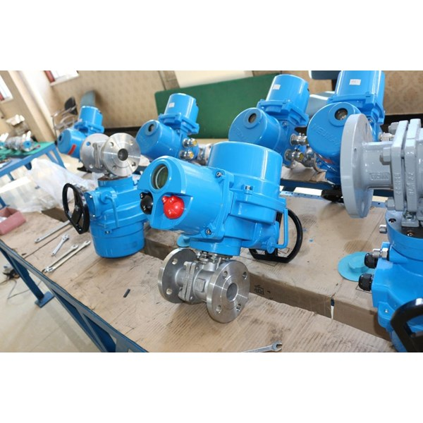 Electric Actuator Neumax
