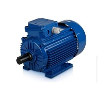 Electric motor yuema