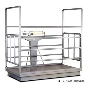 Enclosure Mechanical Scales