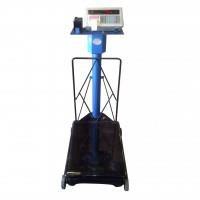 Hybrid Printer Scales