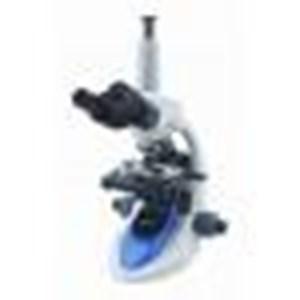 Trinocular Microscope B-193