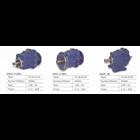 Helical Gear 1