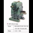 WPS Worm Gear 1