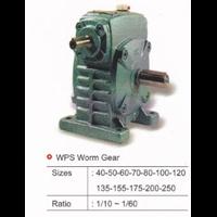 WPS Worm Gear
