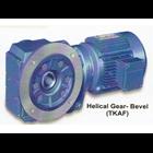 Helical Gear TKAF 1