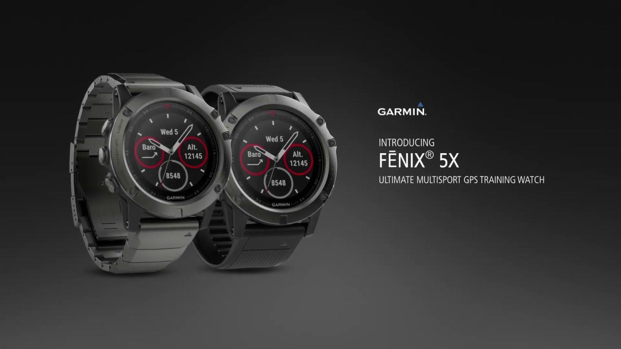 Sell Garmin Fenix 5x Sapphire Black From Indonesia By Toko Rumah Gps Solid State Relay Adalah Gpscheap Price