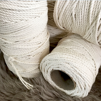 Asbestos Twist Rope Dust