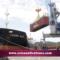 Ekspedisi Laut dengan Kapal Kontainer dan Kapal Curah
