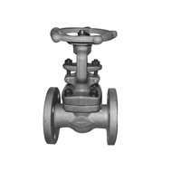Distributor Forged Steel Globe Valve Class 600 900 3