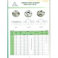 Distributor Socket Weld Flange Class 150 3