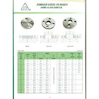 Distributor Threaded Flange Class 600 3