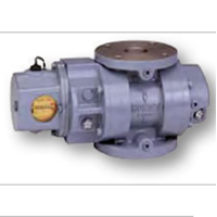Rotary Gas Meter