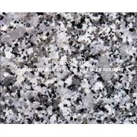 Granit Bianco Perla Granit Alam Import 60X60x1.7Cm (G 2)