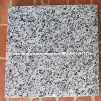 Granit Bianco Sardo Granit Alam Import 60X60x1.7Cm (G 3)