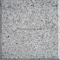 Granit Star White Granit Alam Import 60X60x1.5Cm (G 4)
