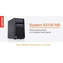 Lenovo Server X3100 series