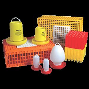 Peralatan Ternak Ayam